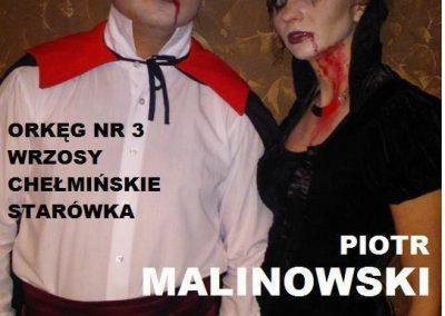 gloswielkopolski.pl741